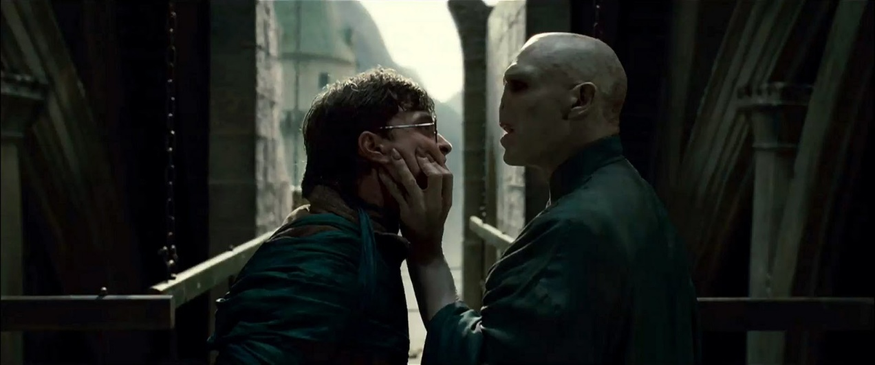 Voldemort & Harry Potter